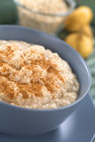 Oatmeal-Maca Porridge with Cinnamon Royalty Free Stock Photo