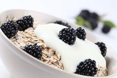 Oatmeal med yoghurt och björnbär royaltyfria foton