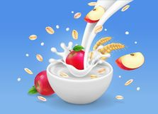 Oatmeal muesli with apples and flowing milk in white bowl Vector realistic illustration Royalty Free Stock Photo