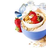 Oatmeal. Royalty Free Stock Photo