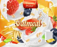 Oatmeal. Oat grains, strawberry, blueberry and milk splashes. 3d vector Stock Images