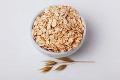 Oatmeal oats in a spikelet pialochke Royalty Free Stock Photo