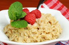 Oatmeal och frukt fotografering för bildbyråer