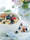 Oatmeal Porridge Stock Photography