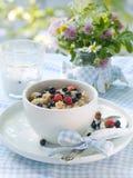 Oatmeal porridge Stock Photo