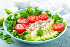 Oatmeal porridge with avocado and vegetable salad of fresh tomatoes and lettuce. Healthy dietary breakfast. Closeup royalty free stock photography