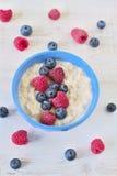 Oatmeal porridge with berries stock image