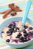Oatmeal porridge with blueberry Stock Photo