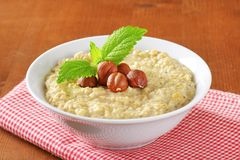 Oatmeal porridge with hazelnuts Royalty Free Stock Photo