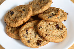 Oatmeal Raisin Cookie Royalty Free Stock Images