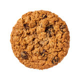 Oatmeal Raisin Cookie isolated Stock Photography