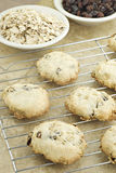 Oatmeal Raisin Cookies Stock Image