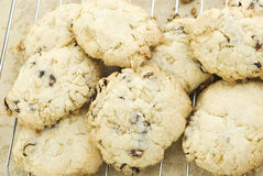 Oatmeal Raisin Cookies Stock Images