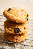 Oatmeal raisin cookies, homemade. Royalty Free Stock Image