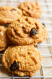 Oatmeal raisin cookies, homemade. Stock Images