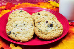 Oatmeal and Raisin Cookies and Milk Stock Images
