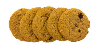Oatmeal raisin cookies in a row Stock Images