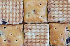 Oatmeal raisin cookies Stock Photos