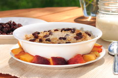 Oatmeal and Raisons Breakfast. Fresh oatmeal topped with raisons, melted butter, and brown sugar.  Includes peaches and milk on the side Royalty Free Stock Photography