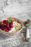 Oatmeal with raspberries and natural yoghurt in a bowl Royalty Free Stock Photos