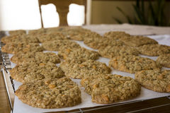 Oatmeal Scotchies Cookies Royalty Free Stock Photo