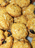 Oatmeal soft chewy fruit cookies-zoom. Fresh baked cookies on a tray with oatmeal and chocolate chip Royalty Free Stock Photos