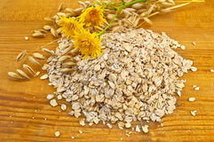 Oatmeal with stalks of oats Stock Image