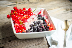 Oatmeal with strawberry puree and assorted berries and coconut, Stock Photo