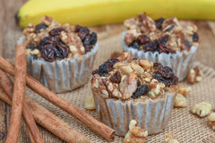 Oatmeal Walnut Muffins Royalty Free Stock Images
