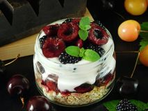 Oatmeal with yogurt and berries in a jar Royalty Free Stock Photo
