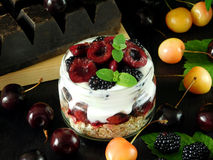 Oatmeal with yogurt and berries in a jar Stock Images