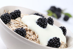 Oatmeal with yogurt and blackberries Royalty Free Stock Photos