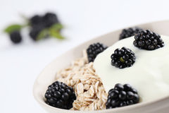 Oatmeal with yogurt and blackberries Royalty Free Stock Images
