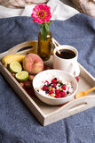 Oatmeal with yogurt and fruit Royalty Free Stock Images
