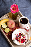 Oatmeal with yogurt and fruit Royalty Free Stock Photography