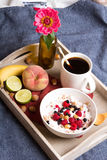 Oatmeal with yogurt and fruit Stock Photos
