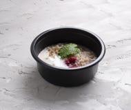 Oatmeal z malinkami i curd w eco karmowym zbiorniku zdjęcie stock
