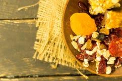 Oatmeal z wysuszonymi owoc Eco Eco karmowi naczynia Ciepły nastrój Obrazy Stock