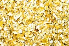 oats arkivbild