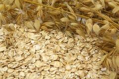 oats arkivfoton