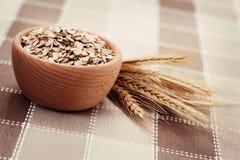 oats royaltyfri fotografi