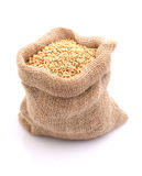 Oats. In a jute bag , on white ground royalty free stock image