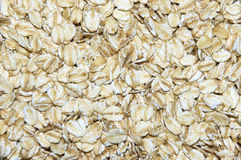Oats. Background of oats cereals, low deep of field royalty free stock photos