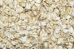 oats royaltyfria foton