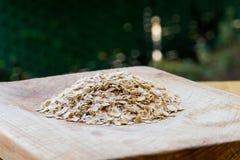 oats Royaltyfria Bilder