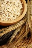 oats royaltyfri bild
