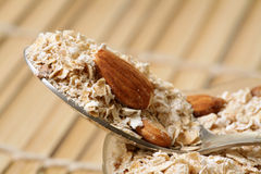 Oats and almonds. Closeup shot of oats and almonds on steel spoon Royalty Free Stock Photo
