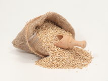 Oats in a bag Royalty Free Stock Images