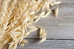 Oats Border over wooden background Stock Images