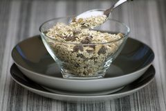 Oats Bowl. Royalty Free Stock Images